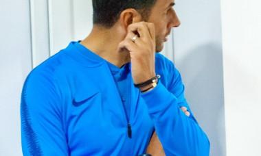 Nicolae Dică, antrenor FCSB