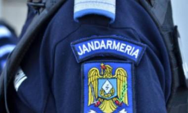 VIDEO | O femeie din București a anunţat jandarmii că în scara unui bloc se află o felină agresivă